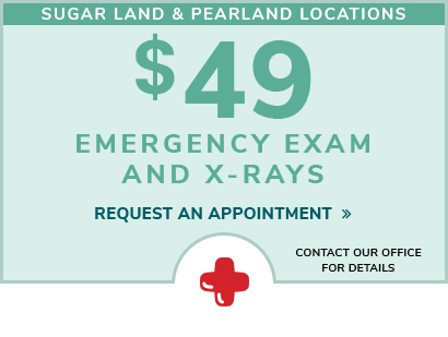 $49 dental emergency visit coupon